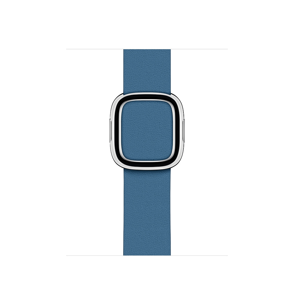 Watch Acc/40/Cape Cod Blue Modern Buckle - L