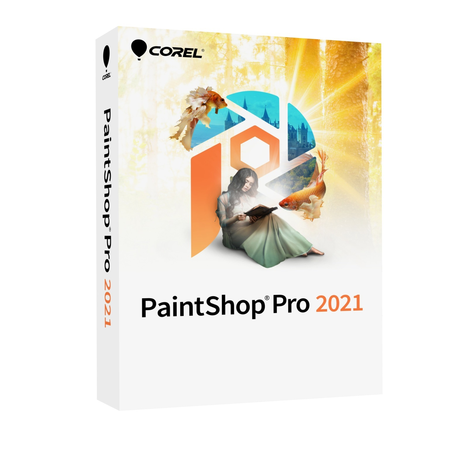 PaintShop Pro 2021 EN Mini-Box