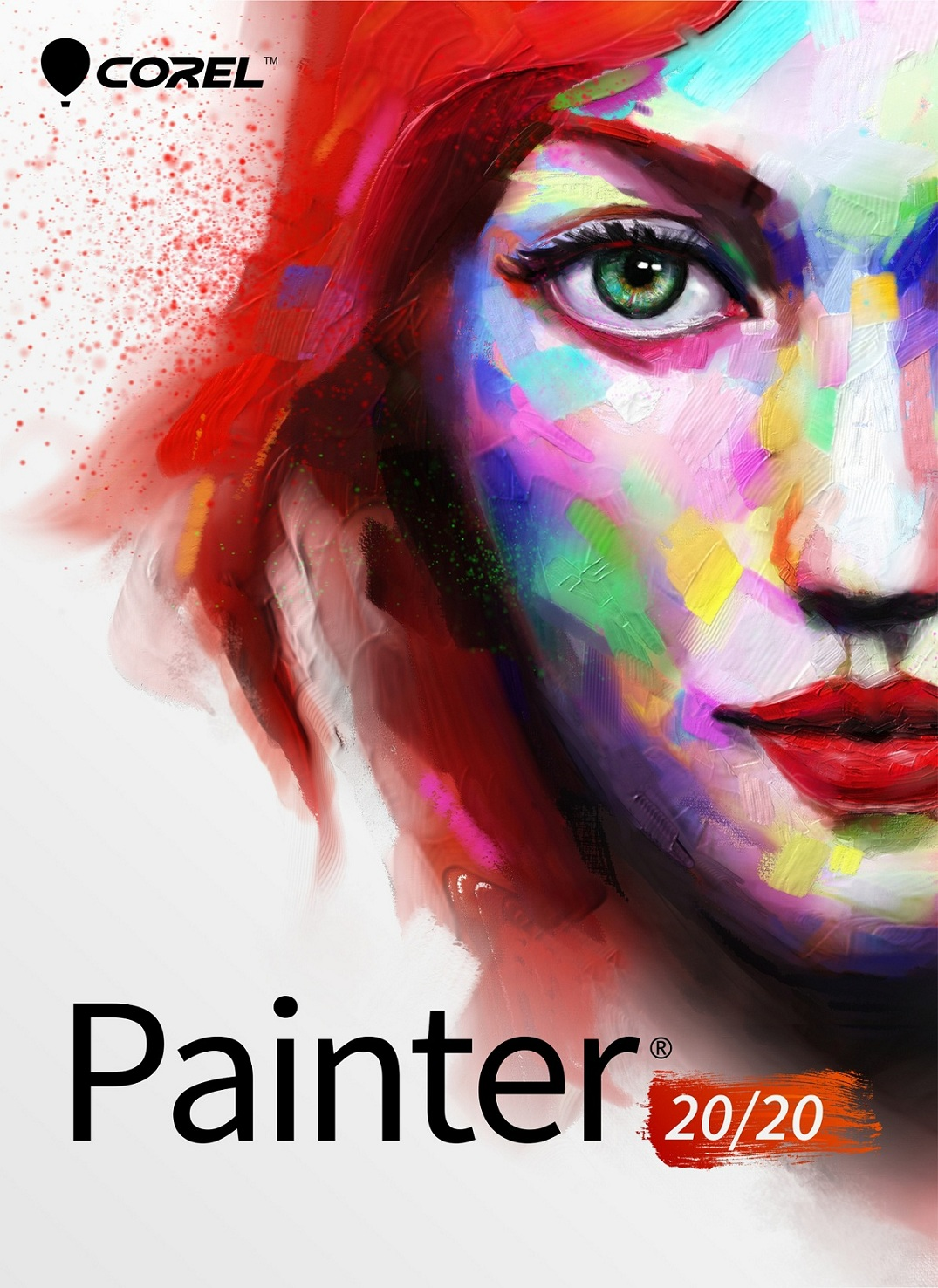 Painter 2020 Classroom License 15+1