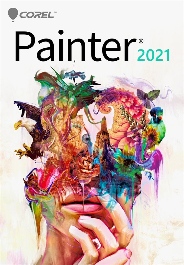 Painter 2021 Classroom License 15+1