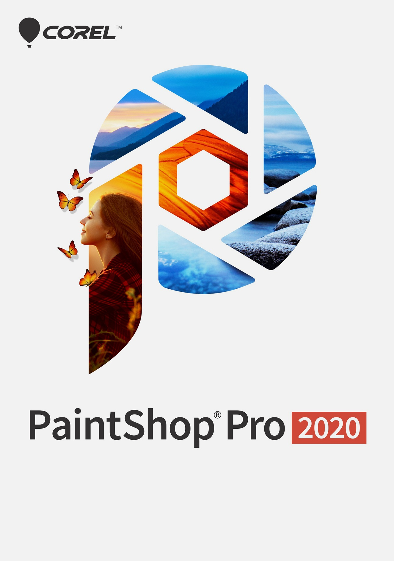 ESD PaintShop Pro 2020 ESD ML