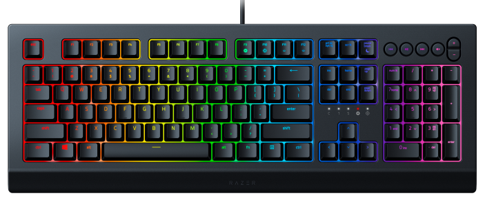 Razer Cynosa V2 US Layout